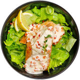 Salmon with green salad in a black plate on a white background. Salmon with green salad in a black plate Stock Photos