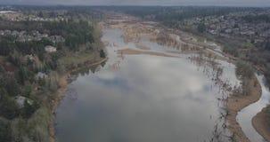 Salmon Greenway Swans blanc banque de vidéos