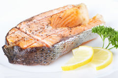 Salmon grill Stock Image