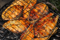 Salmon on grill Stock Photography
