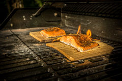 Salmon on the Grill. Two salmon steaks on the grill on top of a wood plank Stock Image