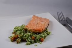 Salmon grilled. Plate of food salmon grilled with vegetables    ready to eat stock image