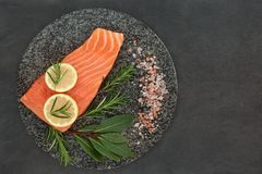 Salmon Healthy Food fresco Immagini Stock