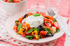 Salmon and Heart Shaped Pasta Salad with Creamy Dressing Royalty Free Stock Image