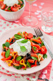 Salmon and Heart Shaped Pasta Salad with Creamy Dressing Stock Images