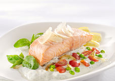 Salmon in herb cream sauce. Dinner with delicious salmon in cream on white plate royalty free stock images