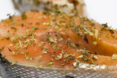 Salmon in herbs marinade prepared for cooking. Raw salmon in herbs marinade prepared for cooking, shallow DoF. Olive oil, lemon, basil, marjoram and oregano stock photos