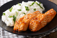 Salmon in honey glaze with sesame seeds and rice garnish close-u Stock Photos