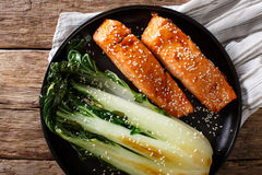 Salmon in honey-soy glaze and fried bok choy close-up. Horizonta Stock Image