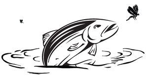 Salmon hunts insects. Jumping out of the water.  Vector done manually without a trace Royalty Free Stock Images