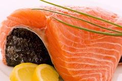 Salmon on Ice Stock Photos
