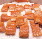 Salmon on ice. Fresh Salmon sliced on ice Royalty Free Stock Images