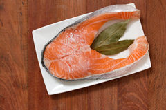 Salmon in ice on dish Royalty Free Stock Image