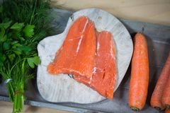 Salmon with ingredients, carrots, dill, parsley on tray. Natural Royalty Free Stock Photography