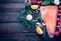 Salmon and ingredients Royalty Free Stock Photography