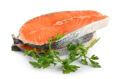 Salmon isolated Stock Photography