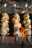 Salmon kebabs Royalty Free Stock Photography