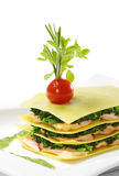 Salmon Lasagna Royalty Free Stock Images