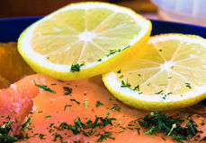 Salmon and Lemon. Closeup photpgraph of a salmon and lemon plate Stock Photography