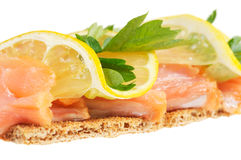 Salmon with lemon Royalty Free Stock Image