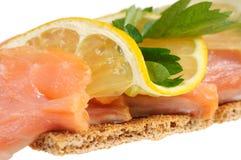 Salmon with lemon Stock Photography
