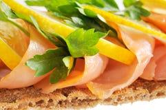 Salmon with lemon Royalty Free Stock Photos