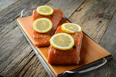 Salmon with Lemons Stock Image