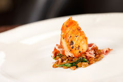 Salmon with lentil Stock Photography