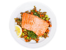 Salmon with Lentils and Arugula in Plate Isolated on White Stock Image