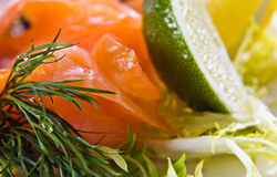Salmon with lime Royalty Free Stock Photos