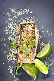 Salmon with Lime and Toasted Coconut Royalty Free Stock Photography