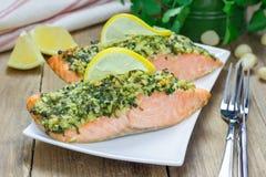 Salmon with macadamia-cilantro crust on a white plate Stock Image