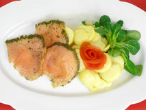 Salmon marinated with dill Stock Images