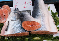 Salmon at market Stock Photos