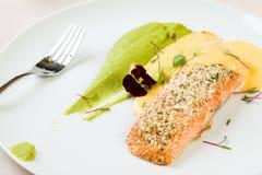 Salmon with mashed potato. Gourmet salmon with mashed potato in white plate stock photos