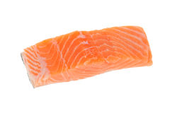 Salmon Meat Stock Images