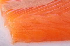 Salmon meat close-up Royalty Free Stock Photos