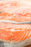 Salmon meat close-up Royalty Free Stock Photo