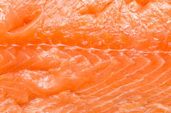 Salmon Meat Texture Royalty Free Stock Photos