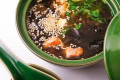 Salmon Miso Soup Imágenes de archivo libres de regalías