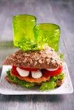 Salmon, mozzarella and tomato brown sandwich Stock Images