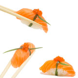 Salmon nigiri. Isolated on white background in chopsticks Royalty Free Stock Photography
