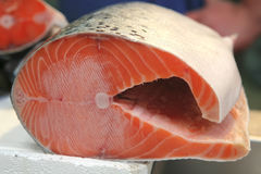 Salmon on open market Royalty Free Stock Photos