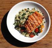 Salmon and Orzo Stock Photos