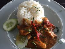 Salmon panang curry stock photos
