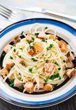 Salmon pasta. Delicious salmon pasta with parsley on a plate Royalty Free Stock Images