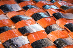 Salmon patchwork Royalty Free Stock Images
