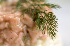 Salmon pate Royalty Free Stock Photos