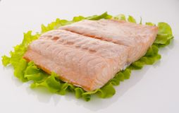 Salmon piece. Piece of steamed salmon and lettuce stock image