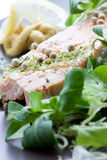 Salmon plate. Salmon dish with salad in a gourmet restaurant Royalty Free Stock Photography